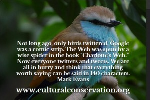 MMW Quotes Only Birds Twittered